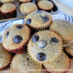 Banana Bread Dark Chocolate Chip Muffins in a pile with extra chocolate chips on top.