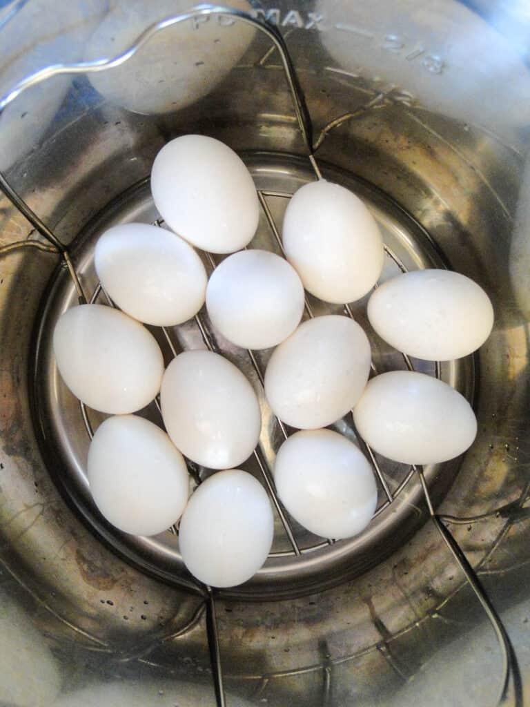 Eggs on trivet in instant pot.