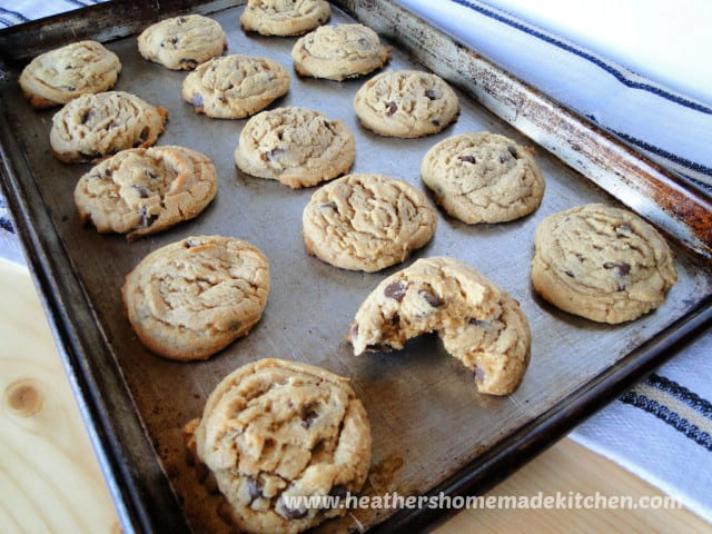 Rows of Peanut Butter Chocolate Chip Cookies on sheet pan
