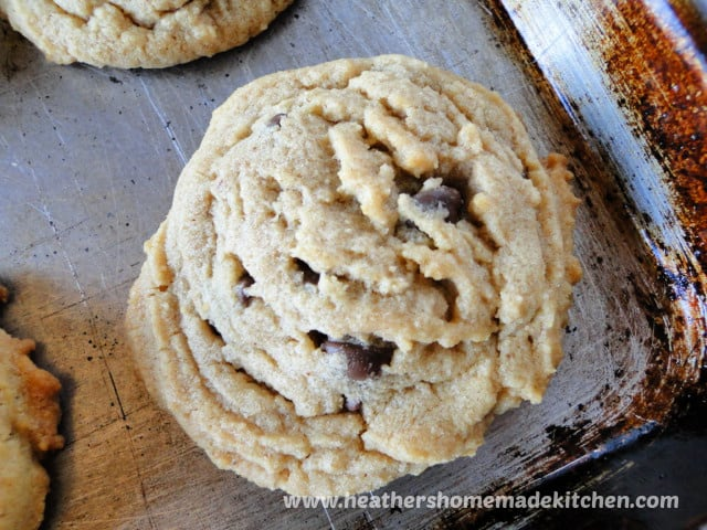Close up view of top of Peanut Butter Chocolate Chip Cookies