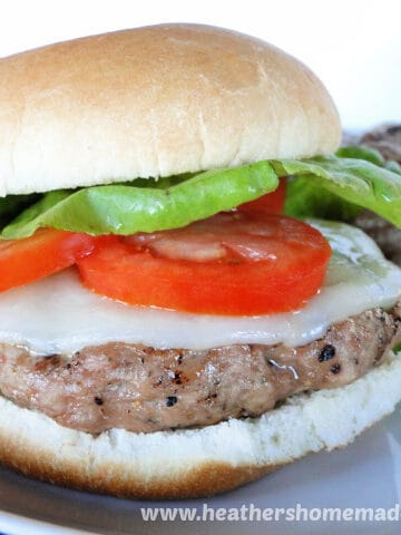 Close up side view of Turkey Burger with cheese, tomato, lettuce on bun.