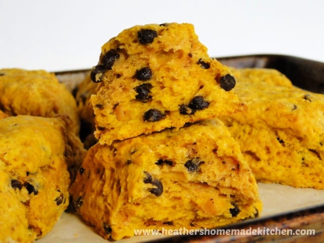 Inside close up view of Pumpkin Chocolate Chip Scones