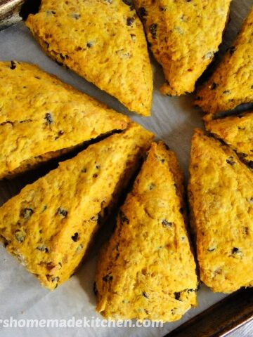 Top view of Pumpkin Chocolate Chip Scones in a circle.