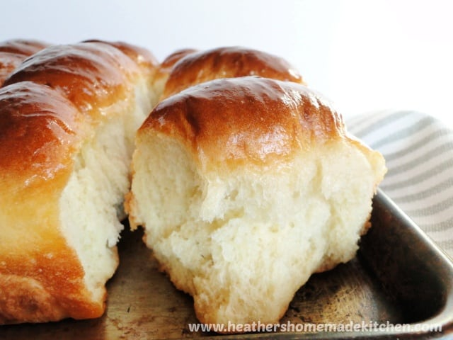 Close up view of No Knead Dinner Rolls