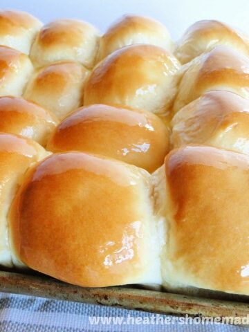 Easy Dinner Rolls with glossy and golden tops in sheet pan