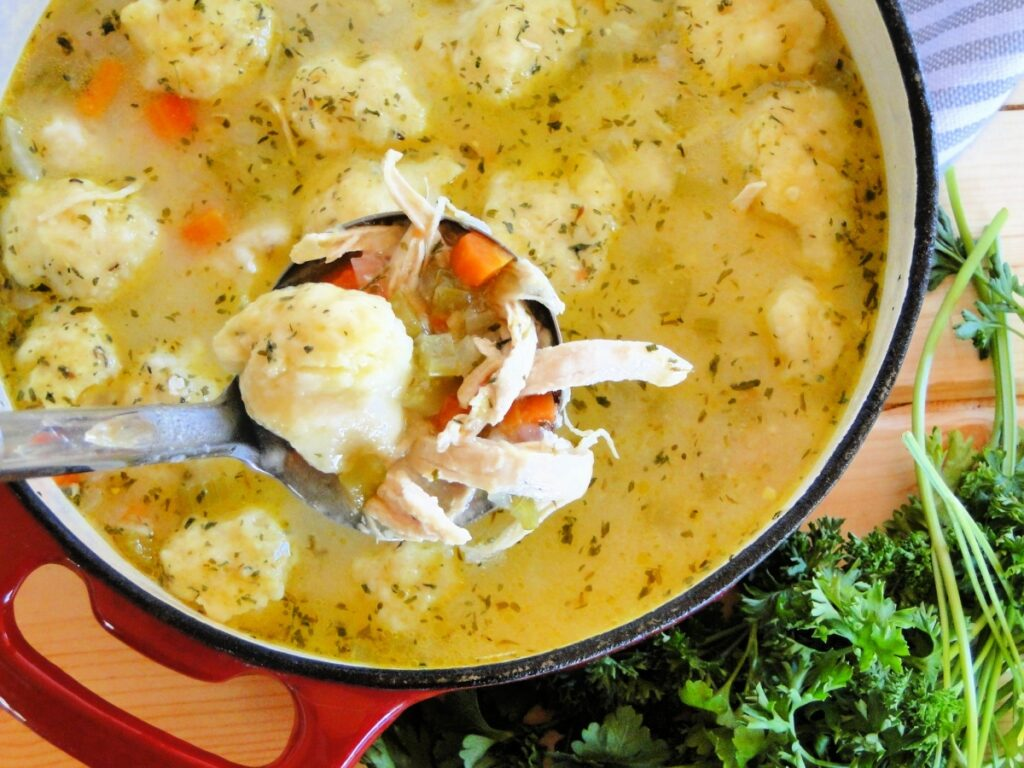 Ladleful of chicken dumpling soup from large red pot full of soup.