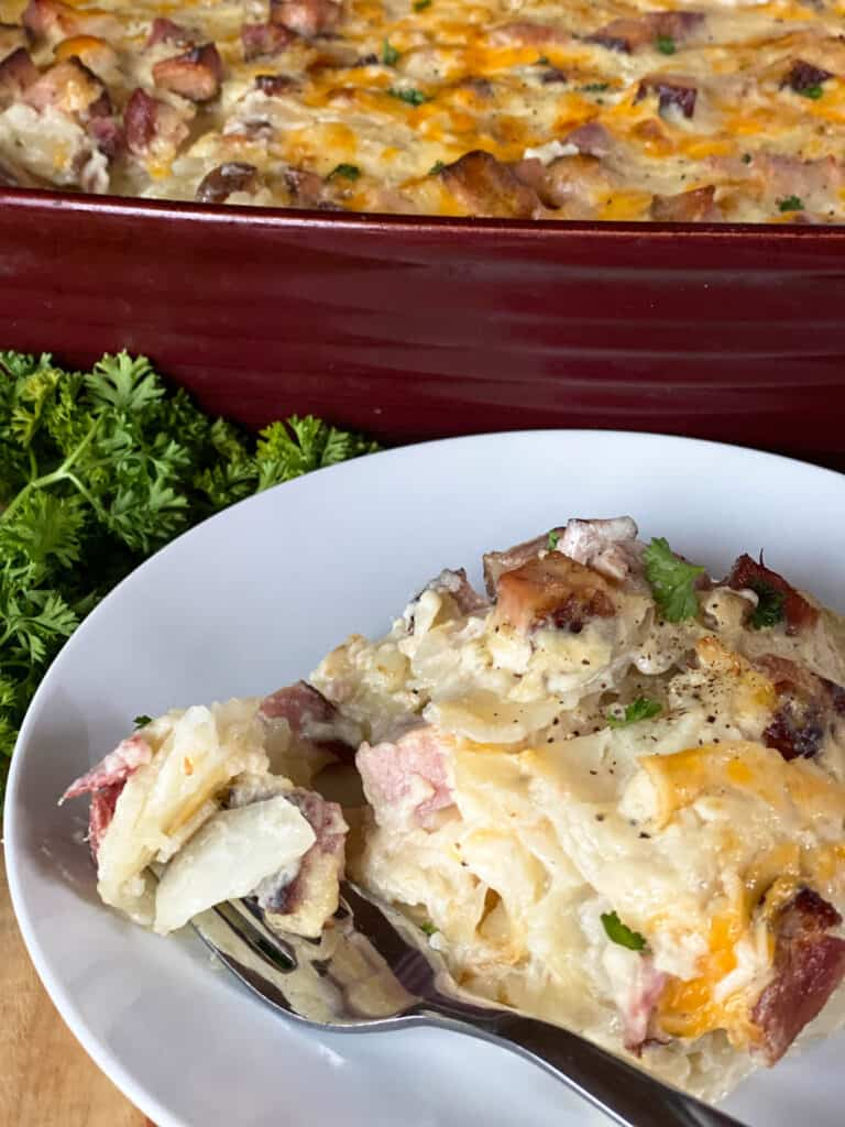 Scalloped potatoes and ham on white round plate with bite on fork in front of red casserole dish.