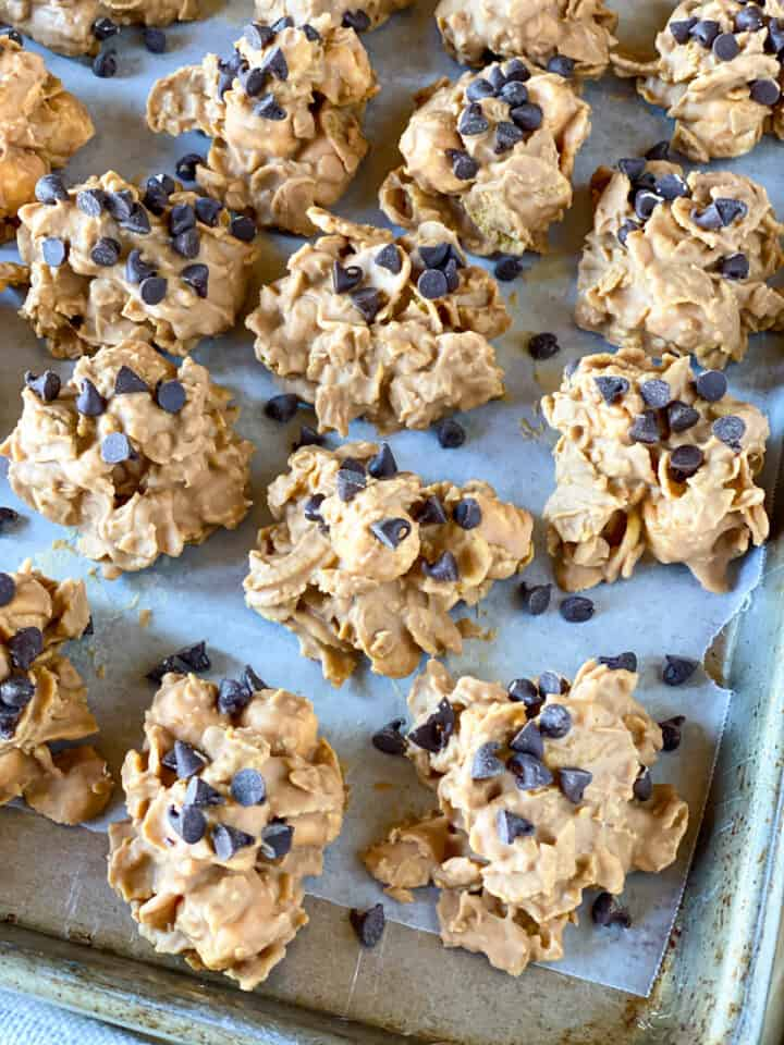 No bake butterscotch cookies in rows on sheet pan.