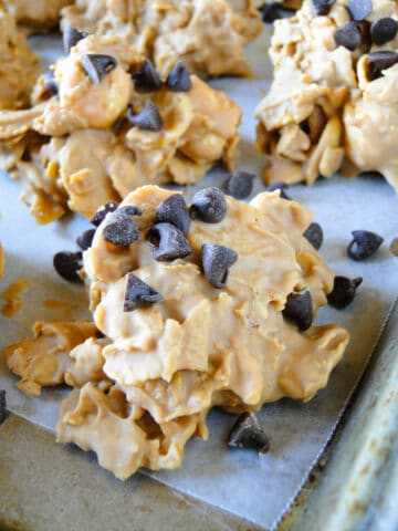 Close up view of no bake butterscotch cookies with mini chocolate chips.