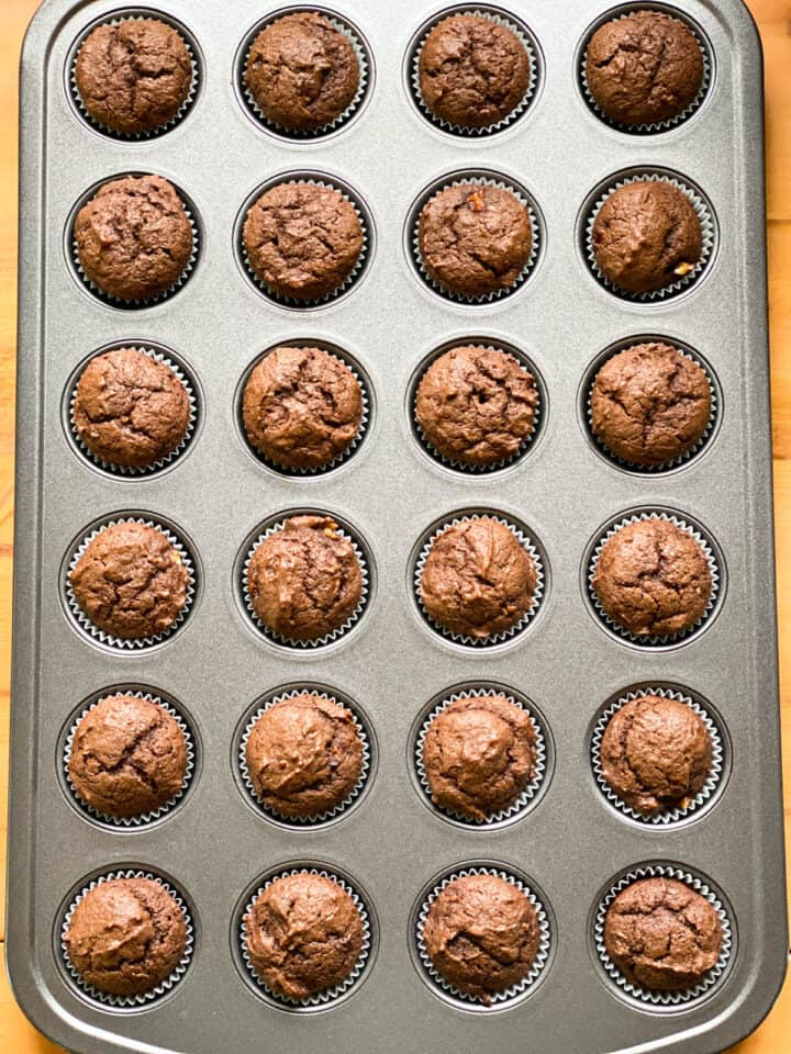 Mini muffins baked in pan.